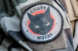 loin-de-chez-nous-chat-noirs
