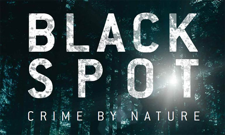 black spot amazon prime video review critics
