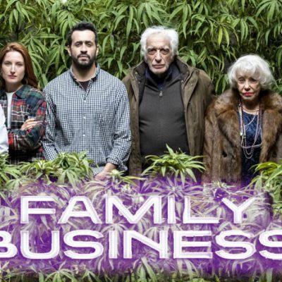 family business netflix avis série